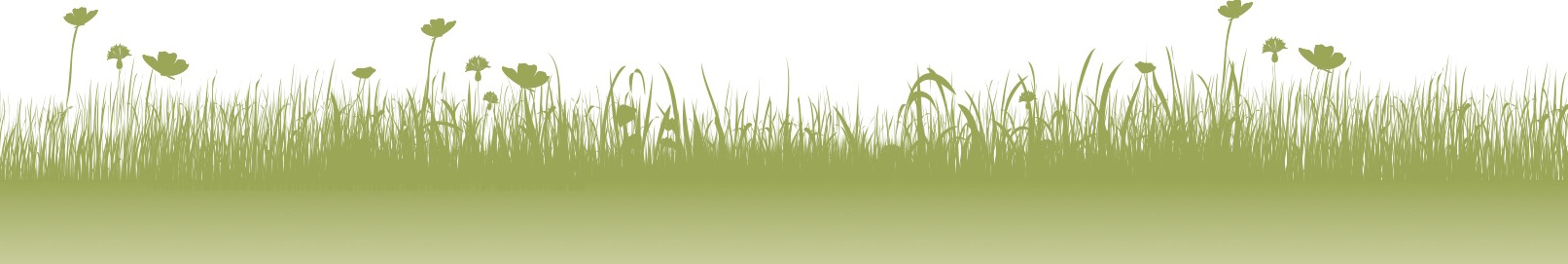 alleen gras
